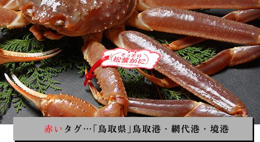 赤いタグ…「鳥取県」鳥取港・網代港・境港