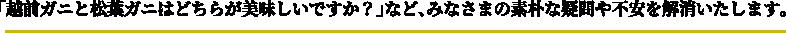 「越前ガニと松葉ガニはどちらが美味しいですか?」など、みなさまの素朴な疑問や不安を解消いたします。