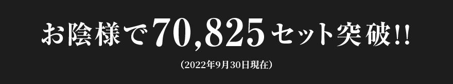 お陰様で44,836セット突破!!(2019年9月30日現在)