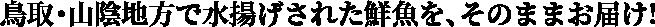 鳥取・山陰地方で水揚げされた鮮魚を、そのままお届け!